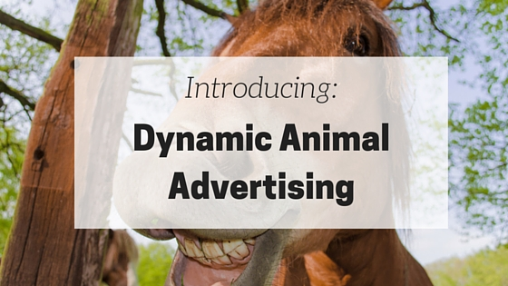 animal ads cover